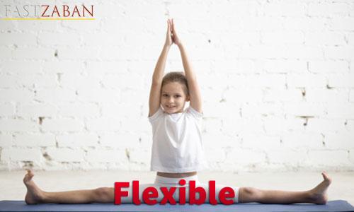 آموزش لغات کتاب ۵۰۴ واژه تصویری - واژه Flexible