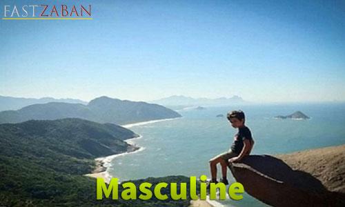 آموزش لغات کتاب ۵۰۴ واژه تصویری - واژه Masculine