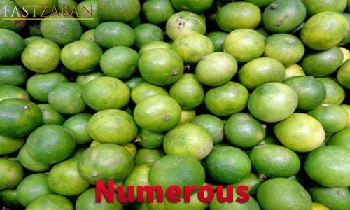 واژه Numerous