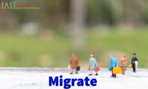 واژه Migrate
