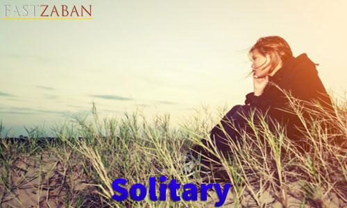 واژه Solitary
