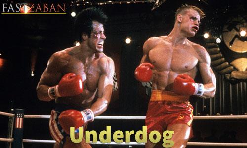 واژه آموزش لغات کتاب ۵۰۴ واژه تصویری - واژه Underdog