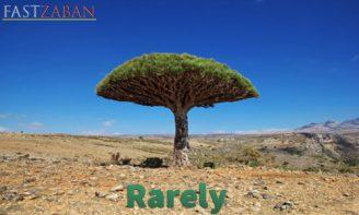 آموزش لغات کتاب ۵۰۴ واژه تصویری - لغت Rarely