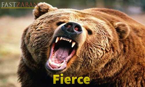 آموزش لغات کتاب ۵۰۴ واژه تصویری - لغت Fierce