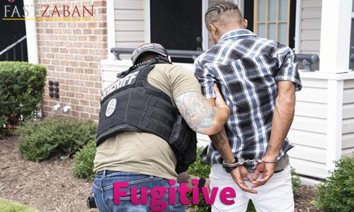 آموزش لغات کتاب ۵۰۴ واژه تصویری - لغت Fugitive