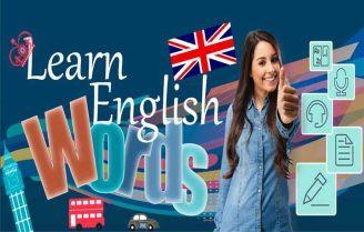 دانلود English for beginners 3.3.2 – آموزش کامل زبان انگلیسی اندروید!
