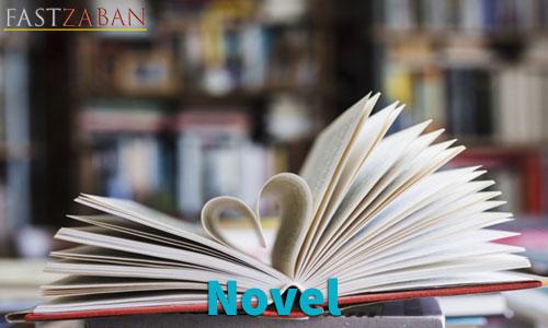 آموزش لغات کتاب ۵۰۴ واژه تصویری - لغت Novel