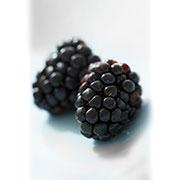 شاه توت، توت سیاه: blackberry