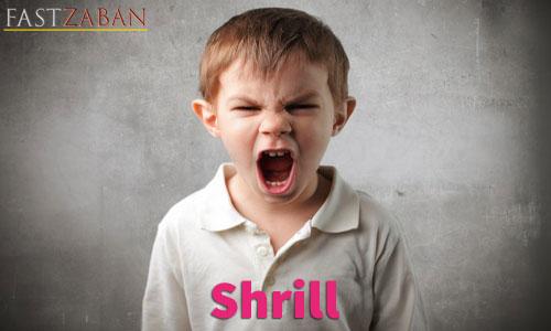 آموزش لغات کتاب ۵۰۴ واژه تصویری - لغت Shrill