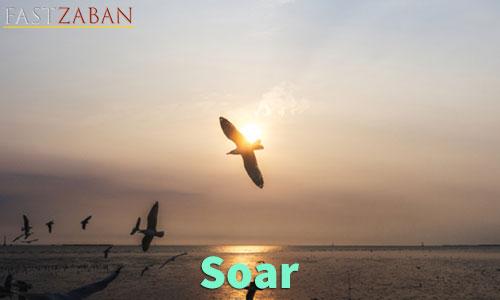 آموزش تصویری لغات ۵۰۴ - لغت Soar