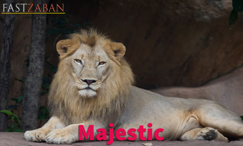 آموزش تصویری لغات ۵۰۴ واژه - لغت Majestic