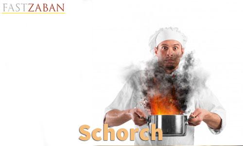 آموزش لغات کتاب ۵۰۴ واژه تصویری - لغت Scorch